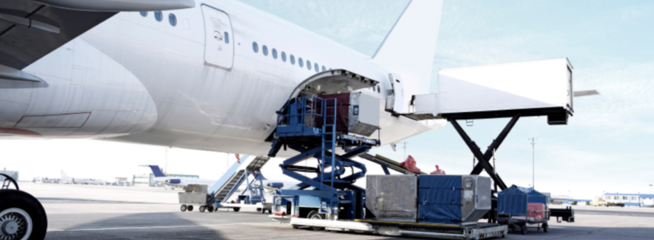 Live Animals are handled with utmost care and are only loaded into heated cargo compartments of the aircraft.